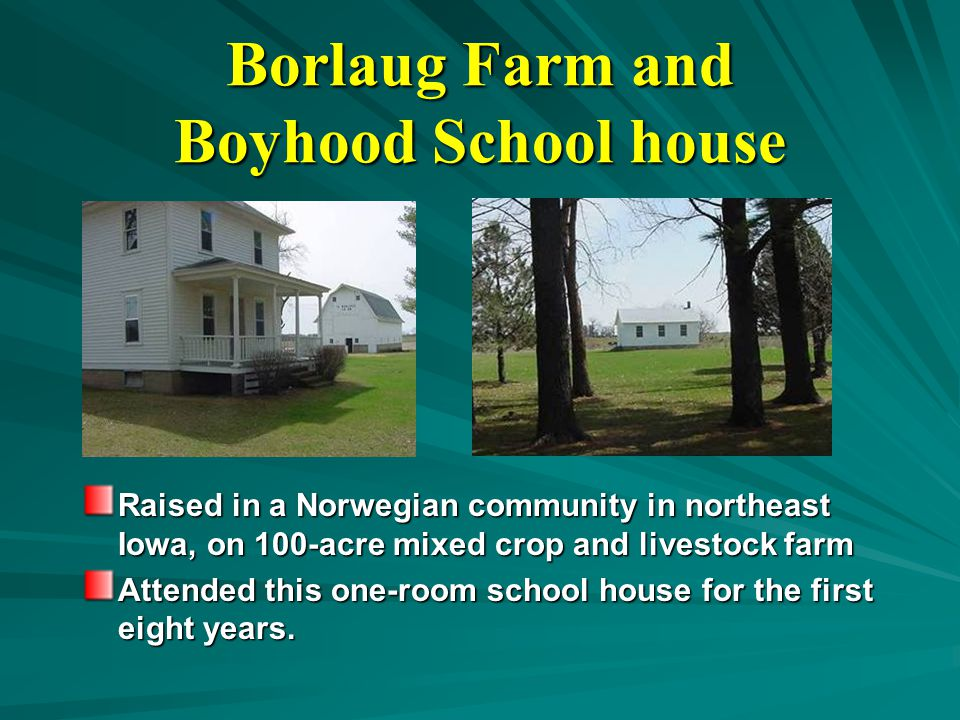 Borlaug Farm and Boyhood School house Raised in a Norwegian community in northeast Iowa, on 100-acre mixed crop and livestock farm Attended this one-room school house for the first eight years.