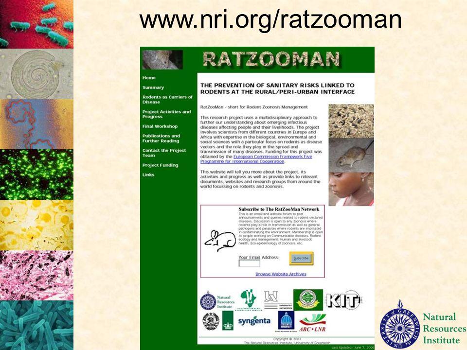 www.nri.org/ratzooman