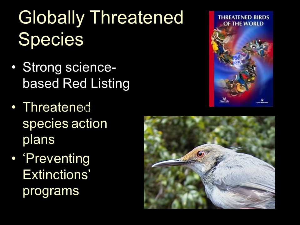 Globally Threatened Species Strong science- based Red Listing Threatened species action plans 'Preventing Extinctions' programs http://amaninature.org