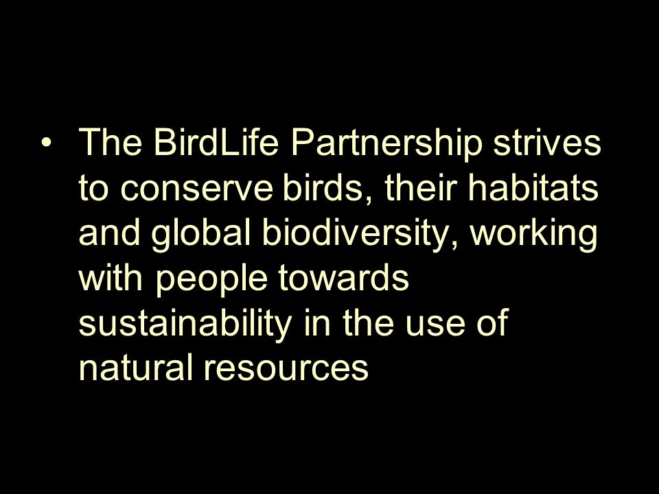 The BirdLife Partnership strives to conserve birds, their habitats and global biodiversity, working with people towards sustainability in the use of n