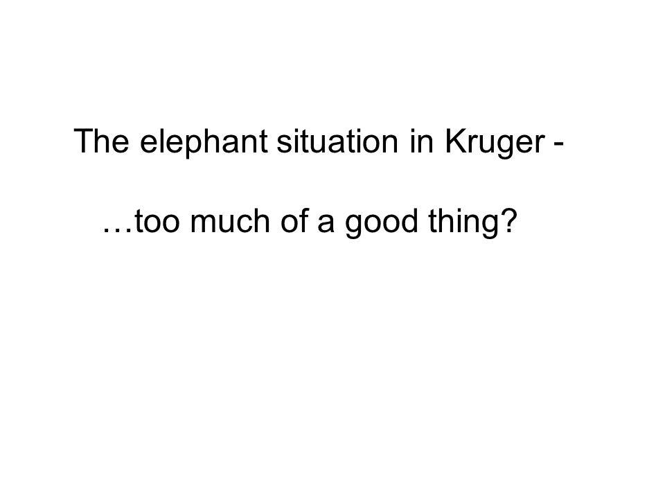 The elephant situation in Kruger - …too much of a good thing?