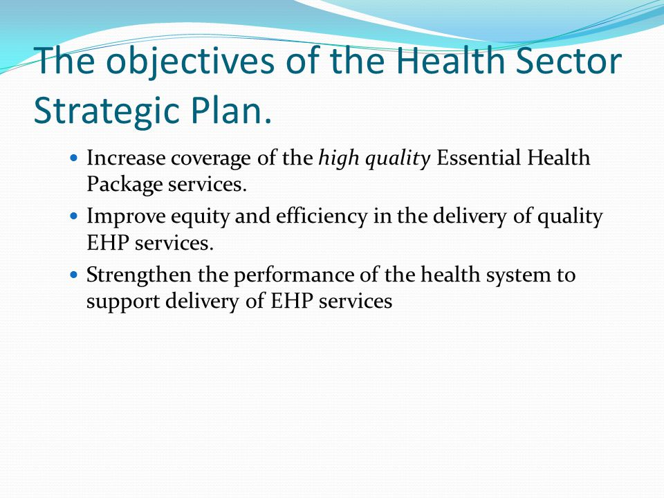 The objectives of the Health Sector Strategic Plan.