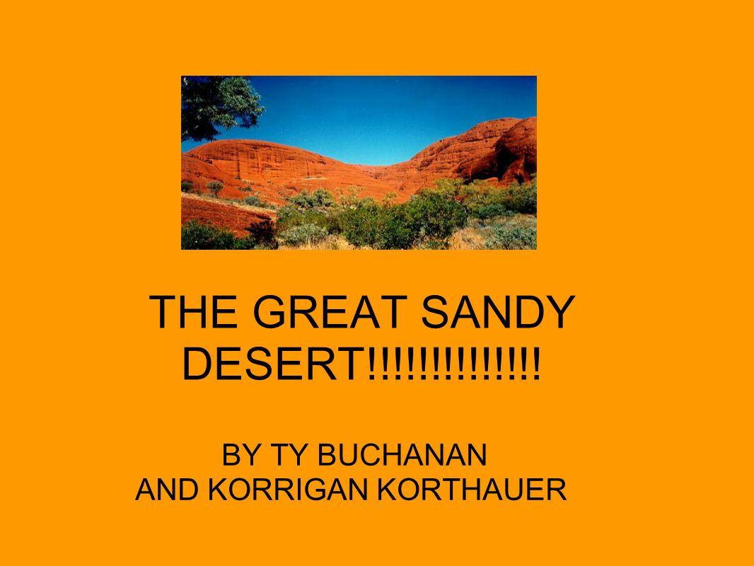 THE GREAT SANDY DESERT!!!!!!!!!!!!!! BY TY BUCHANAN AND KORRIGAN KORTHAUER