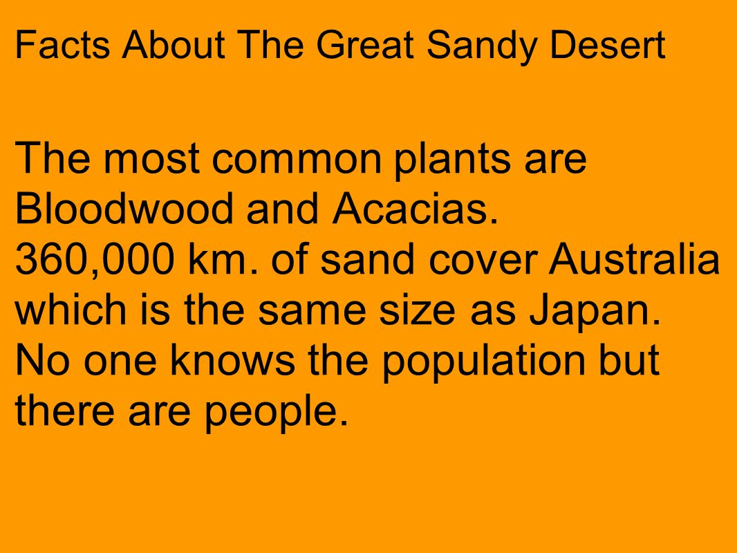 Facts About The Great Sandy Desert The most common plants are Bloodwood and Acacias.