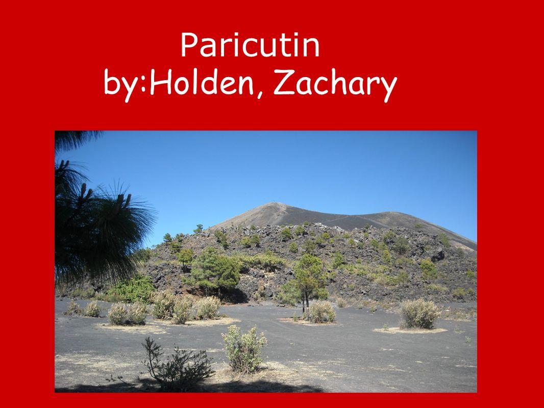 Paricutin by:Holden, Zachary