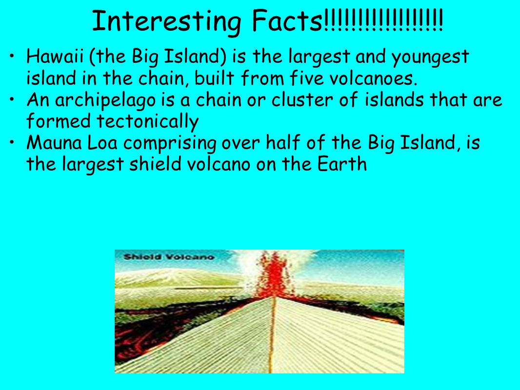 Interesting Facts!!!!!!!!!!!!!!!!!.