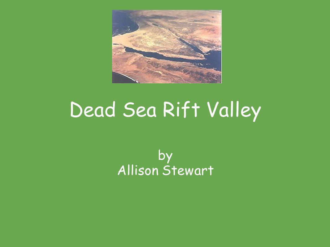 Dead Sea Rift Valley by Allison Stewart