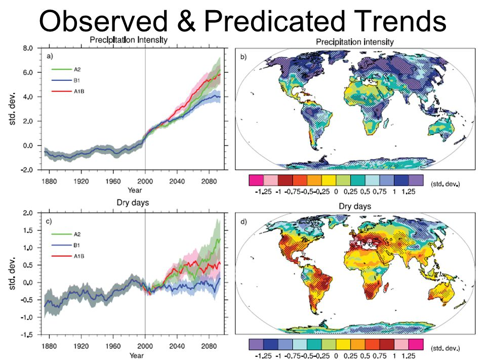 Observed & Predicated Trends