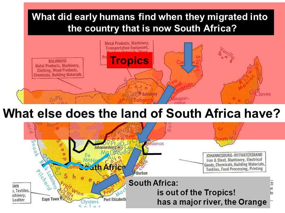 South Africa South Africa: is out of the Tropics! has a major river, the Orange Tropics What did early humans find when they migrated into the country