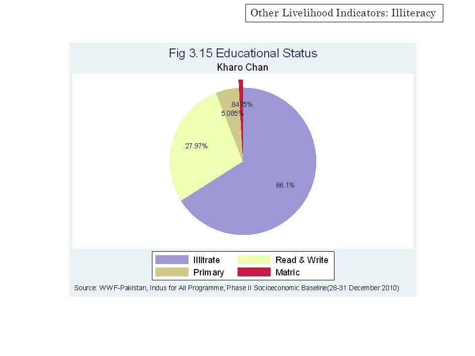 Other Livelihood Indicators: Illiteracy