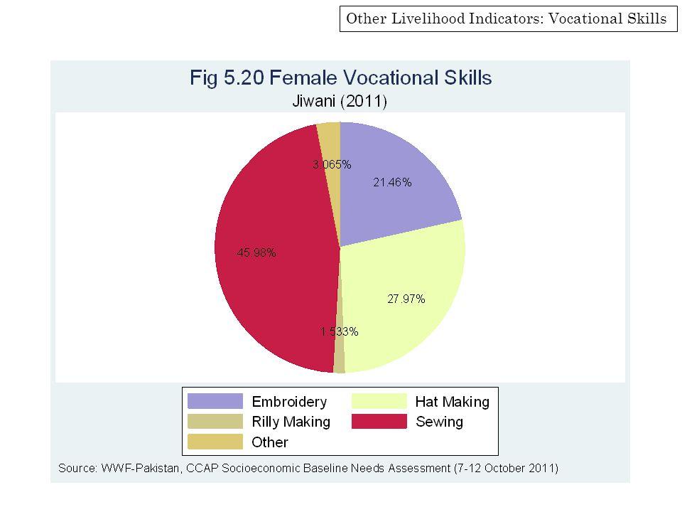 Other Livelihood Indicators: Vocational Skills