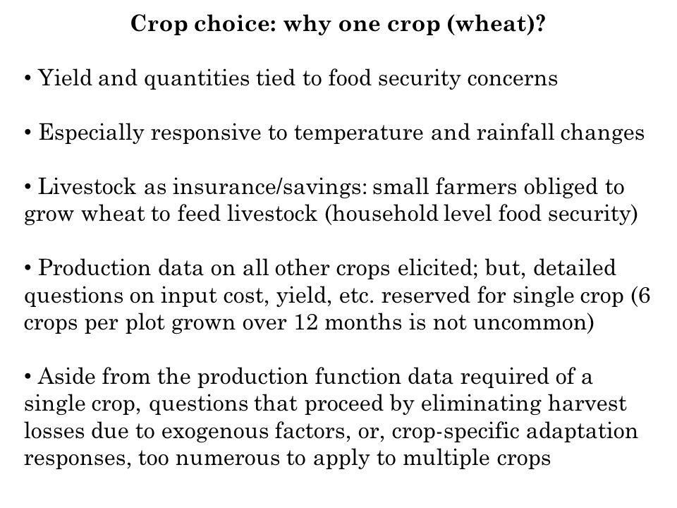 Crop choice: why one crop (wheat)? Yield and quantities tied to food security concerns Especially responsive to temperature and rainfall changes Lives