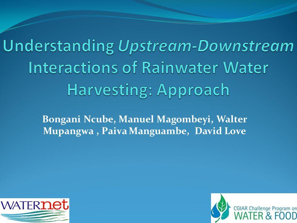 Bongani Ncube, Manuel Magombeyi, Walter Mupangwa, Paiva Manguambe, David Love