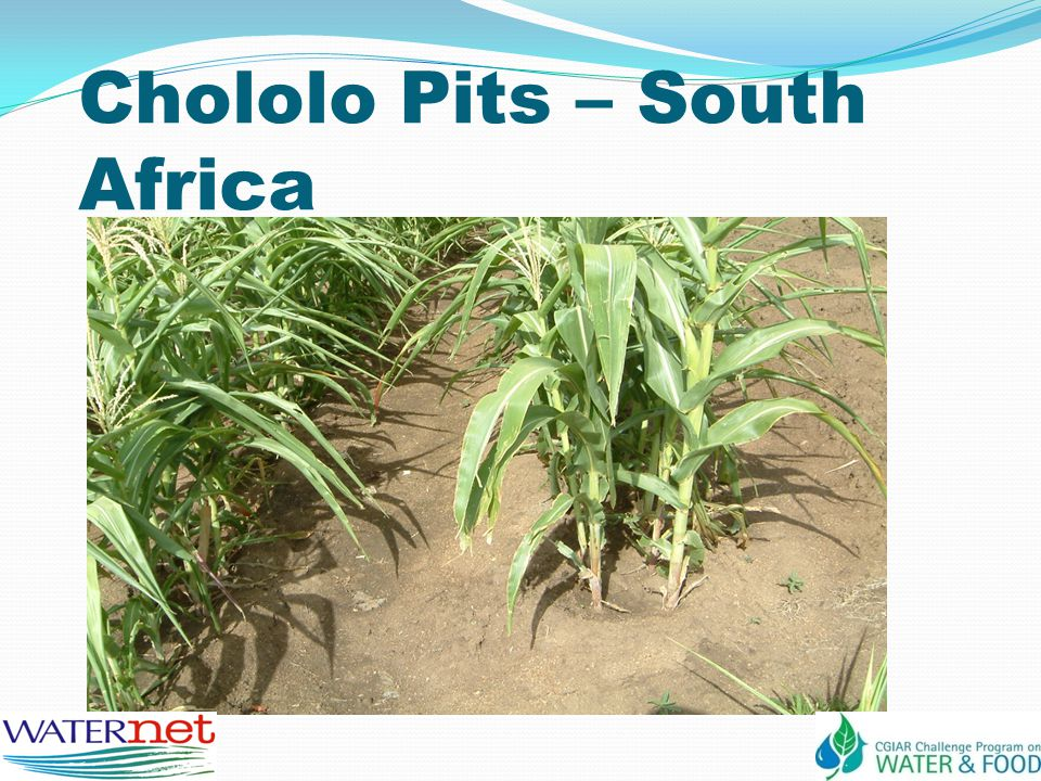 Chololo Pits – South Africa