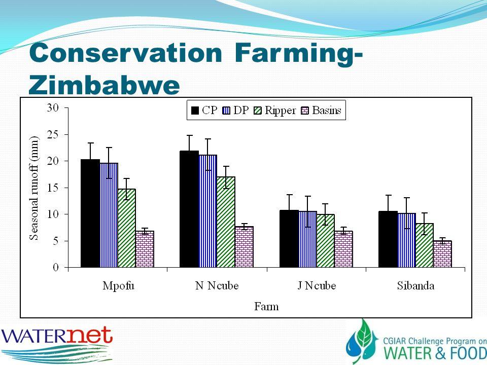 Conservation Farming- Zimbabwe