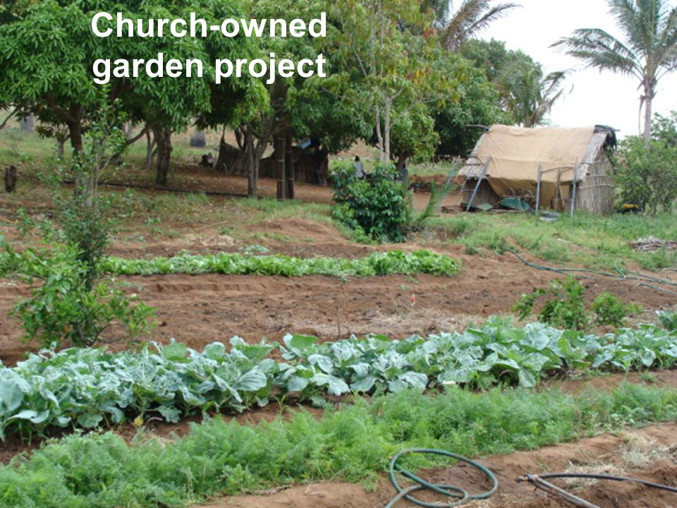 Church-owned garden project