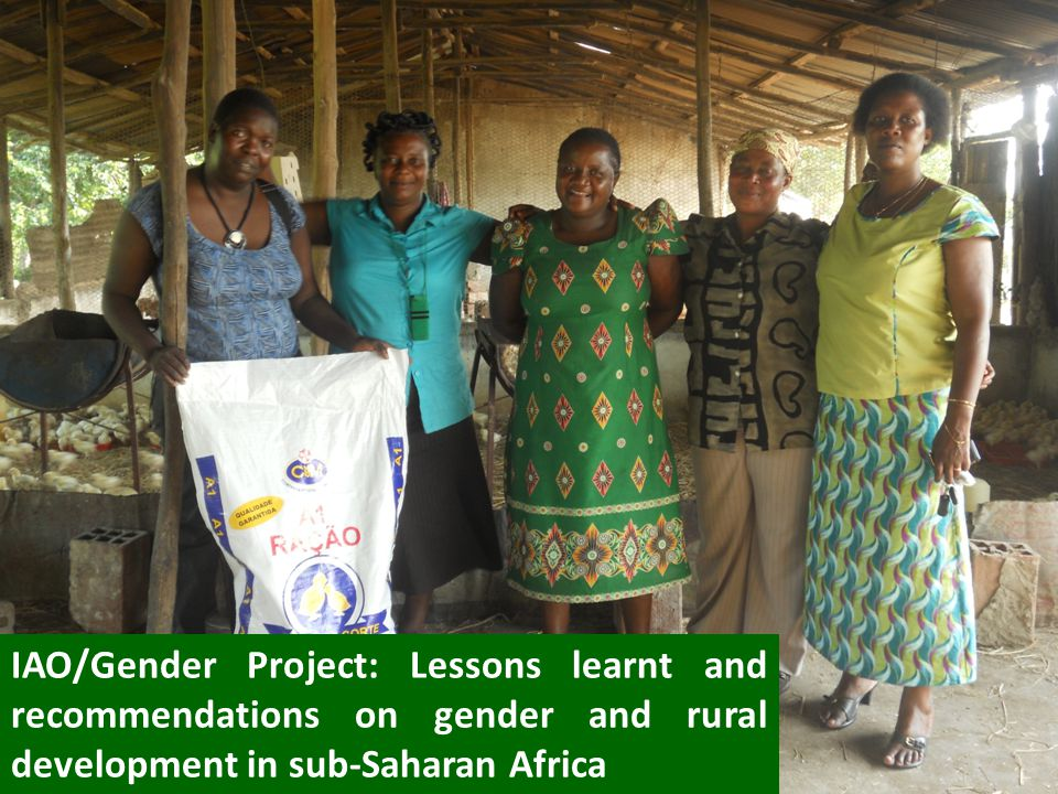 IAO/Gender Project: Lessons learnt and recommendations on gender and rural development in sub-Saharan Africa