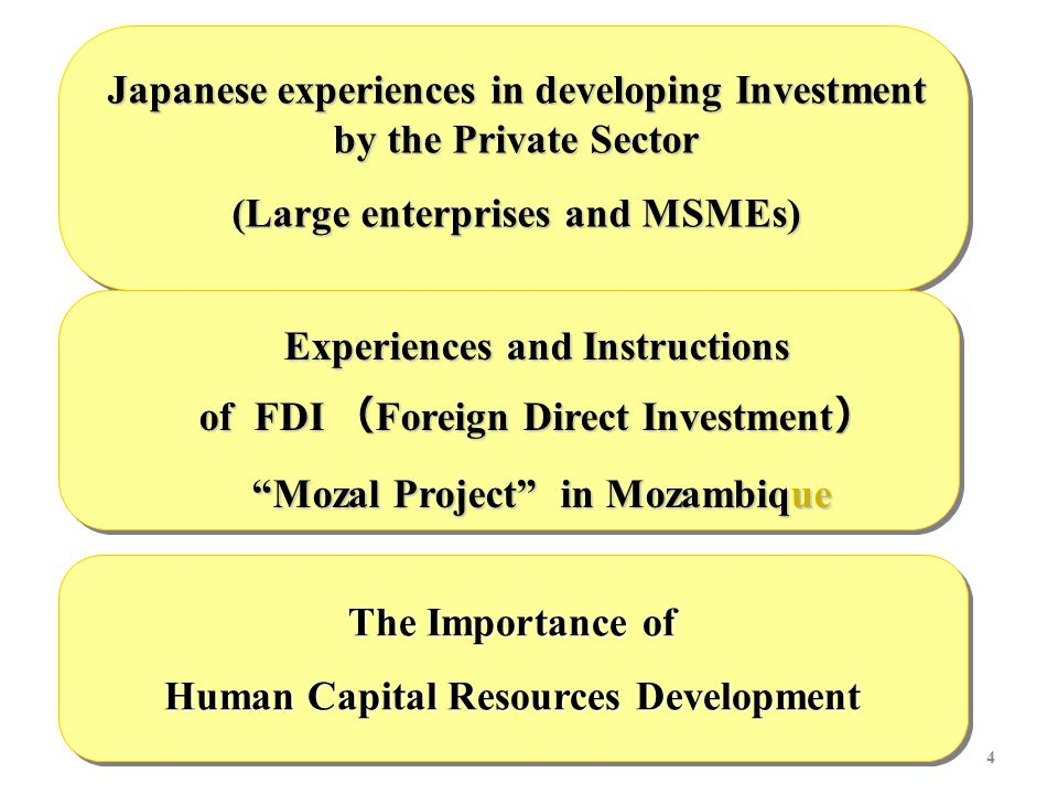 4 Japanese experiences in developing Investment by the Private Sector (Large enterprises and MSMEs) Experiences and Instructions of FDI ( Foreign Direct Investment ) Mozal Project in Mozambique Mozal Project in Mozambique The Importance of Human Capital Resources Development The Importance of Human Capital Resources Development