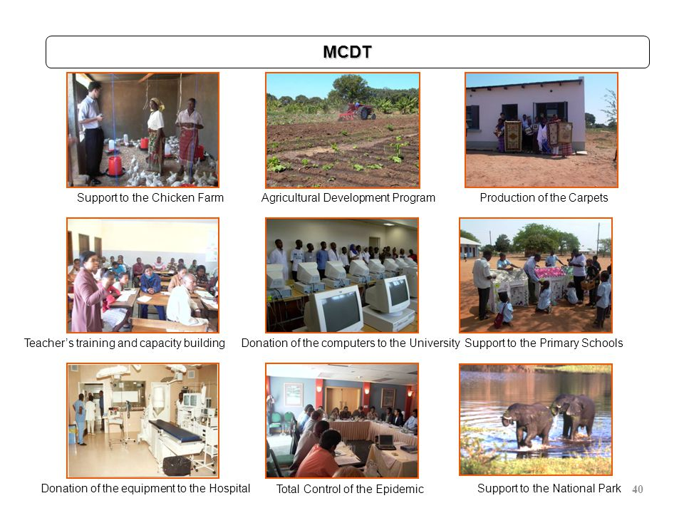 40 Support to the Chicken FarmAgricultural Development ProgramProduction of the Carpets MCDT Teacher's training and capacity buildingDonation of the c