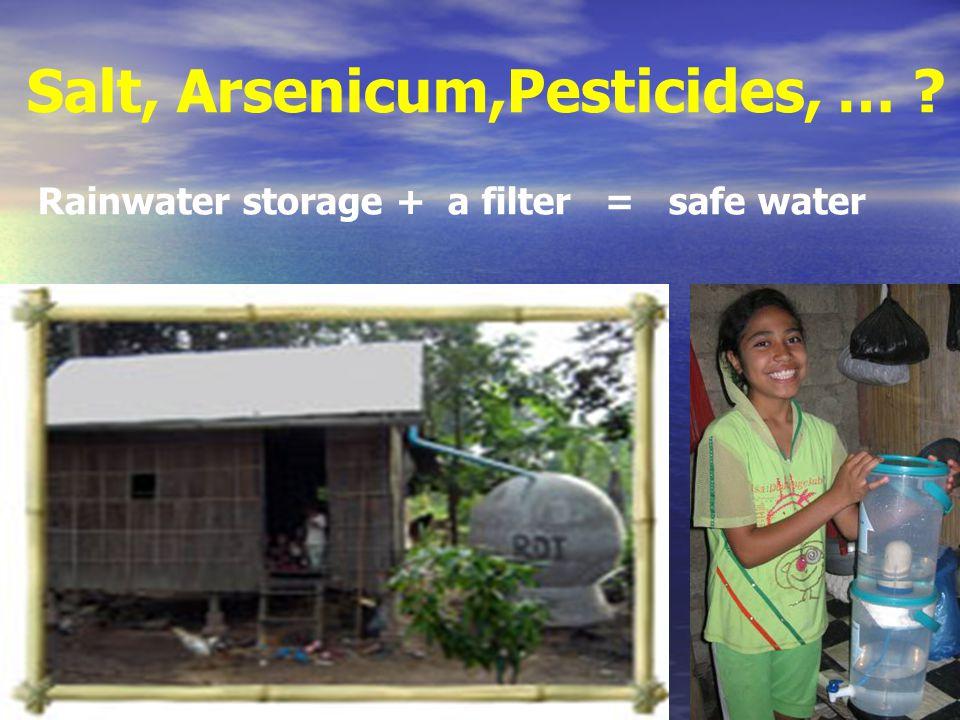Salt, Arsenicum,Pesticides, … ? Rainwater storage + a filter = safe water