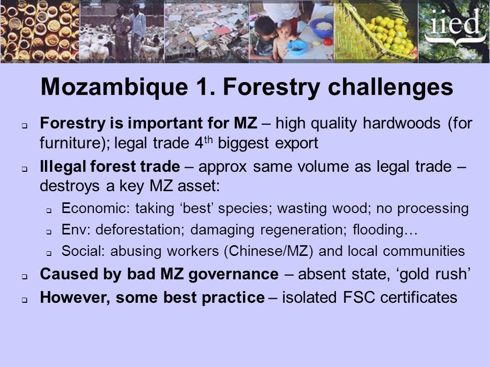 Mozambique 1.