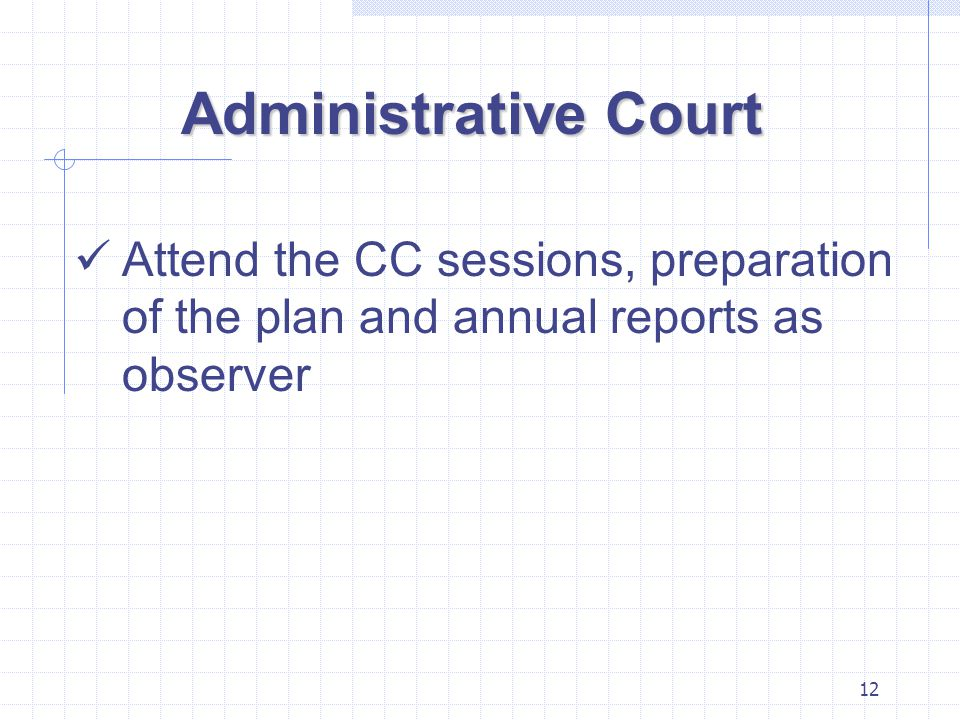 12 Administrative Court Attend the CC sessions, preparation of the plan and annual reports as observer