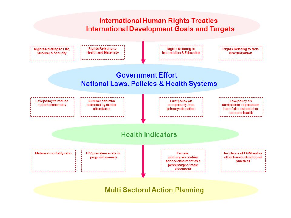 International Human Rights Treaties International Development Goals and Targets Government Effort National Laws, Policies & Health Systems Health Indicators Multi Sectoral Action Planning Rights Relating to Information & Education Rights Relating to Non- discrimination Rights Relating to Health and Maternity Rights Relating to Life, Survival & Security HIV prevalence rate in pregnant women Maternal mortality ratioFemale, primary/secondary school enrolment as a percentage of male enrolment Incidence of FGM and/or other harmful traditional practices Number of births attended by skilled attendants Law/policy to reduce maternal mortality Law/policy on compulsory, free primary education Law/policy on elimination of practices harmful to maternal or neonatal health
