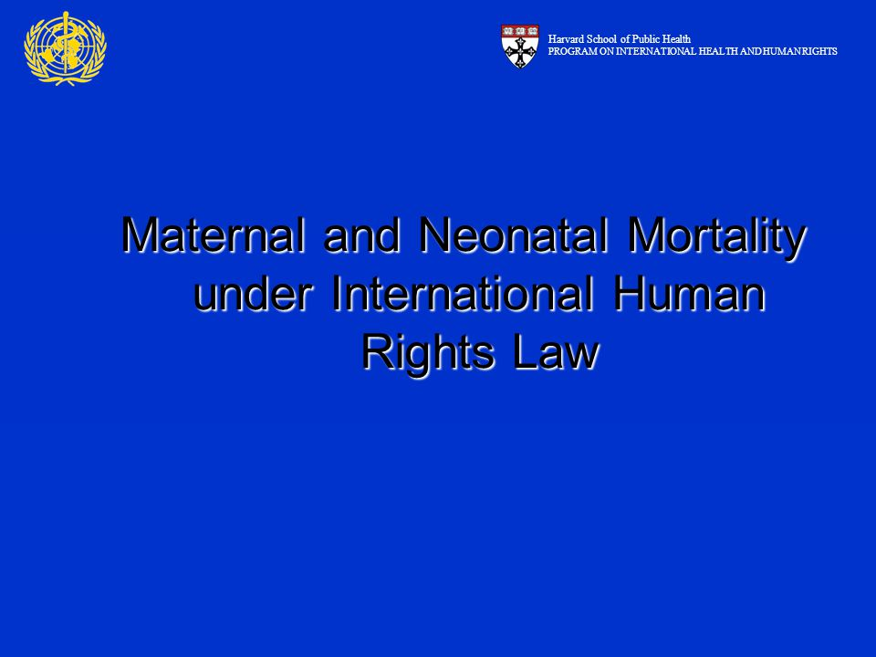 Maternal and Neonatal Mortality under International Human Rights Law Harvard School of Public Health PROGRAM ON INTERNATIONAL HEALTH AND HUMAN RIGHTS