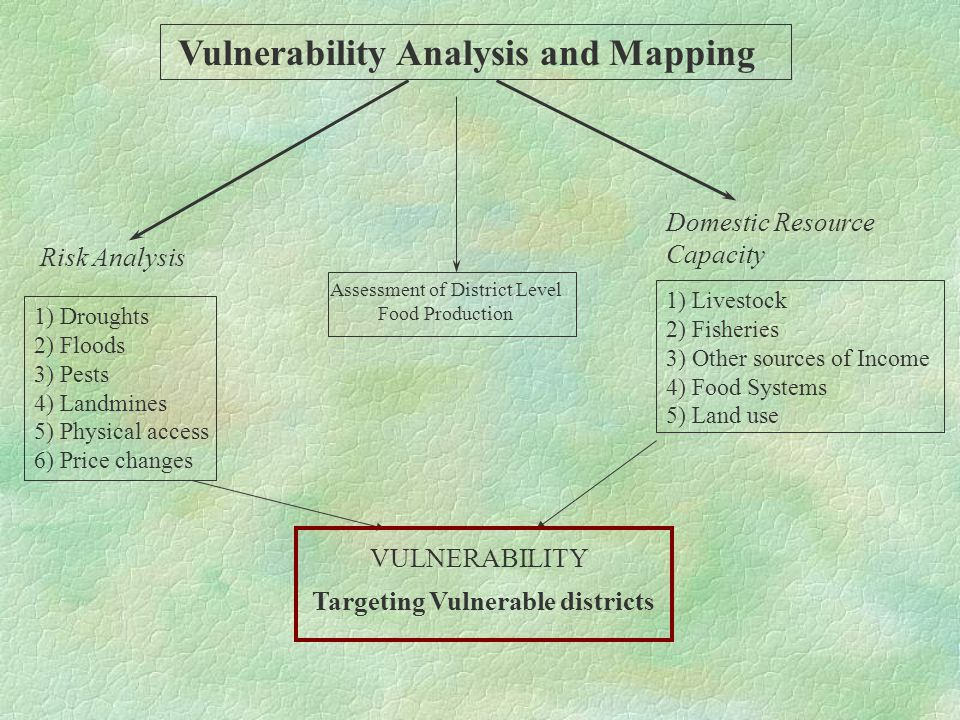 Vulnerability Analysis and Mapping Risk Analysis Domestic Resource Capacity VULNERABILITY Targeting Vulnerable districts 1) Droughts 2) Floods 3) Pests 4) Landmines 5) Physical access 6) Price changes 1) Livestock 2) Fisheries 3) Other sources of Income 4) Food Systems 5) Land use Assessment of District Level Food Production
