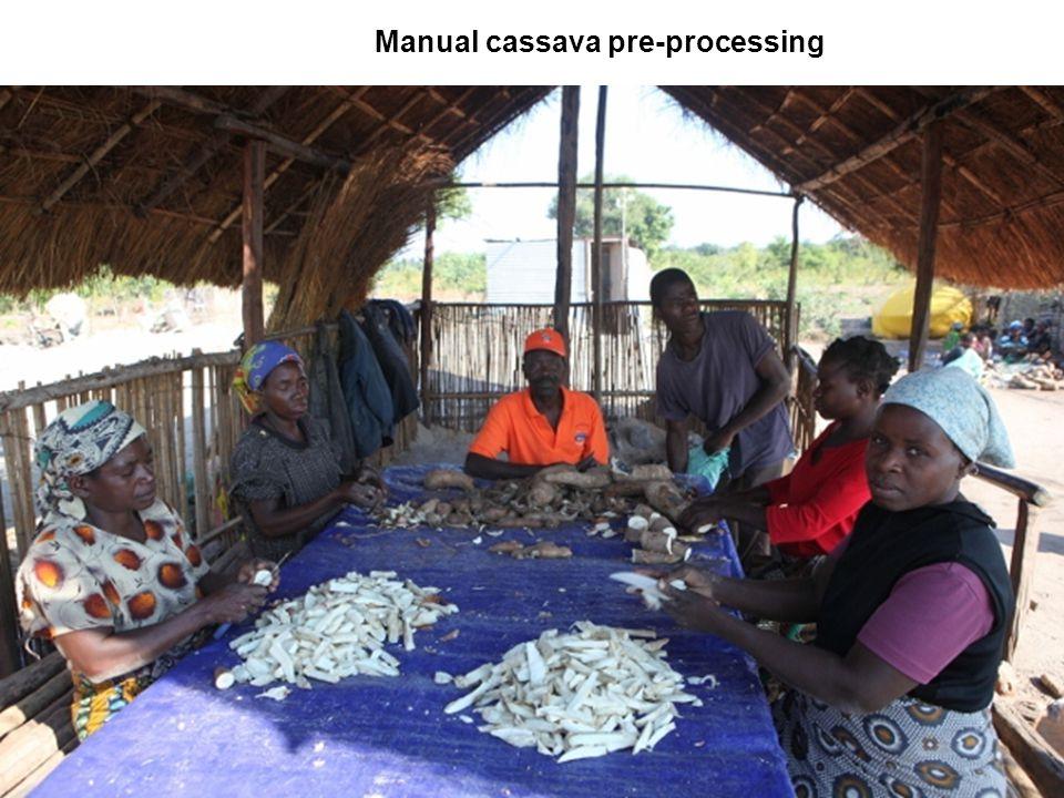 Manual cassava pre-processing
