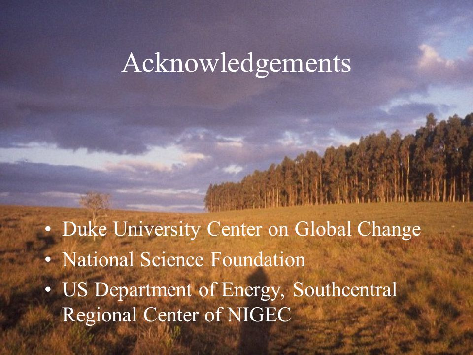 Acknowledgements Duke University Center on Global Change National Science Foundation US Department of Energy, Southcentral Regional Center of NIGEC