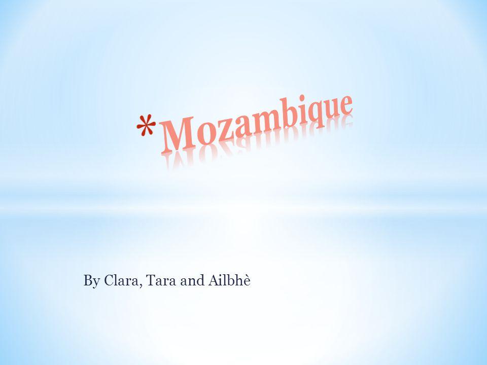 By Clara, Tara and Ailbhè