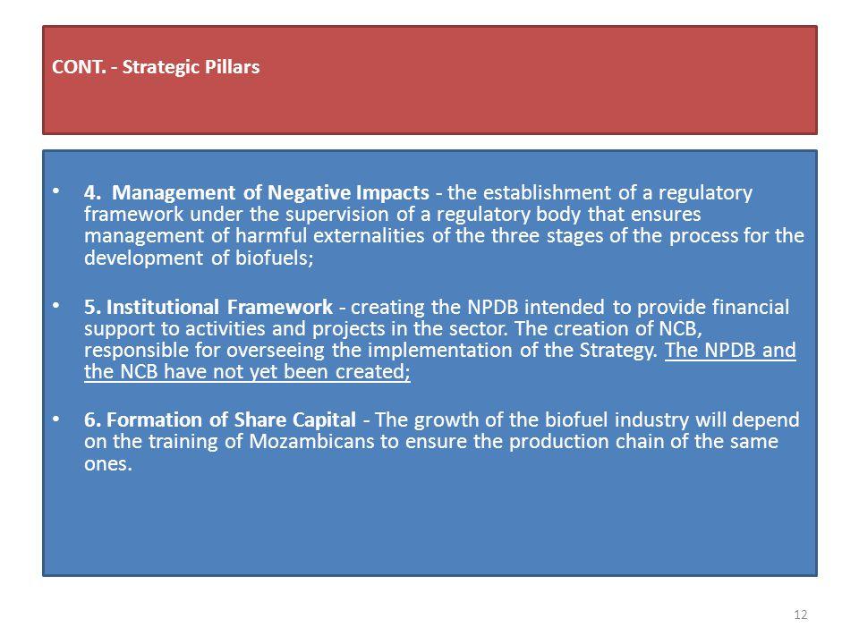 CONT. - Strategic Pillars 4.