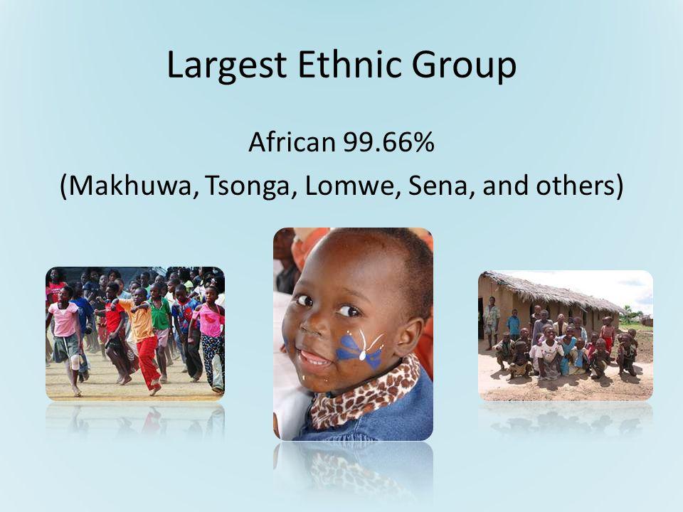 Largest Ethnic Group African 99.66% (Makhuwa, Tsonga, Lomwe, Sena, and others)