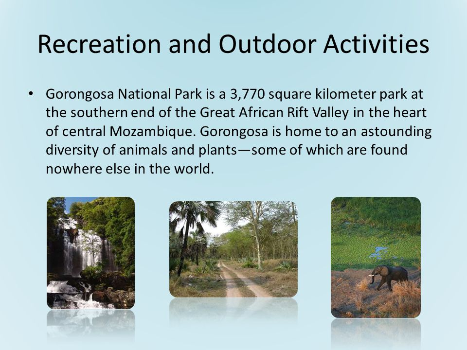 Recreation and Outdoor Activities Gorongosa National Park is a 3,770 square kilometer park at the southern end of the Great African Rift Valley in the heart of central Mozambique.