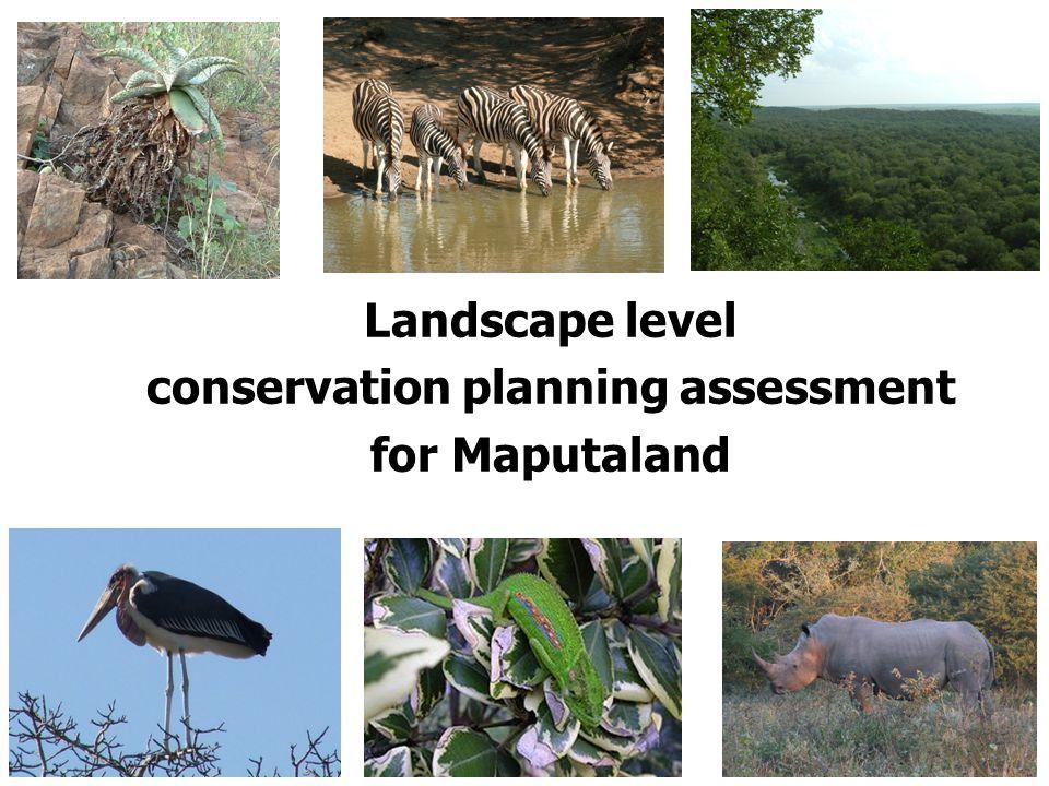 Landscape level conservation planning assessment for Maputaland