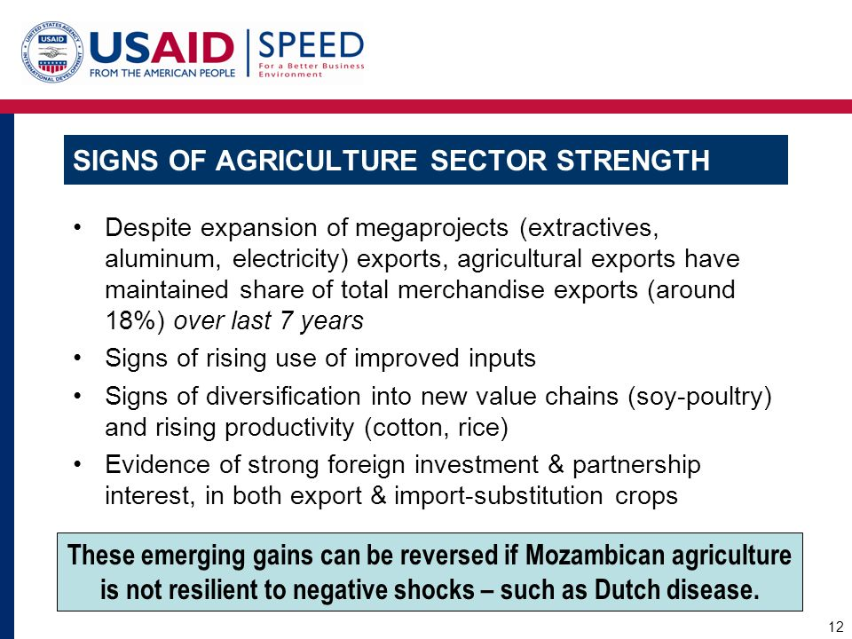 SIGNS OF AGRICULTURE SECTOR STRENGTH Despite expansion of megaprojects (extractives, aluminum, electricity) exports, agricultural exports have maintai