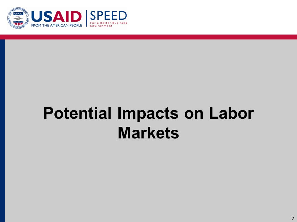 Potential Impacts on Labor Markets 5