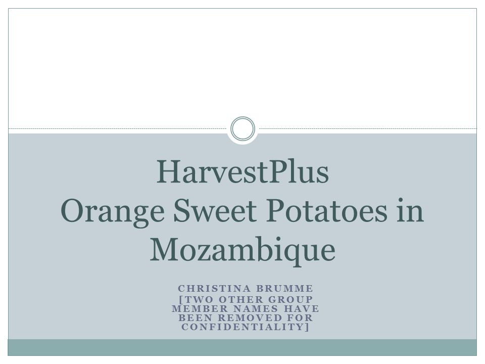 CHRISTINA BRUMME [TWO OTHER GROUP MEMBER NAMES HAVE BEEN REMOVED FOR CONFIDENTIALITY] HarvestPlus Orange Sweet Potatoes in Mozambique