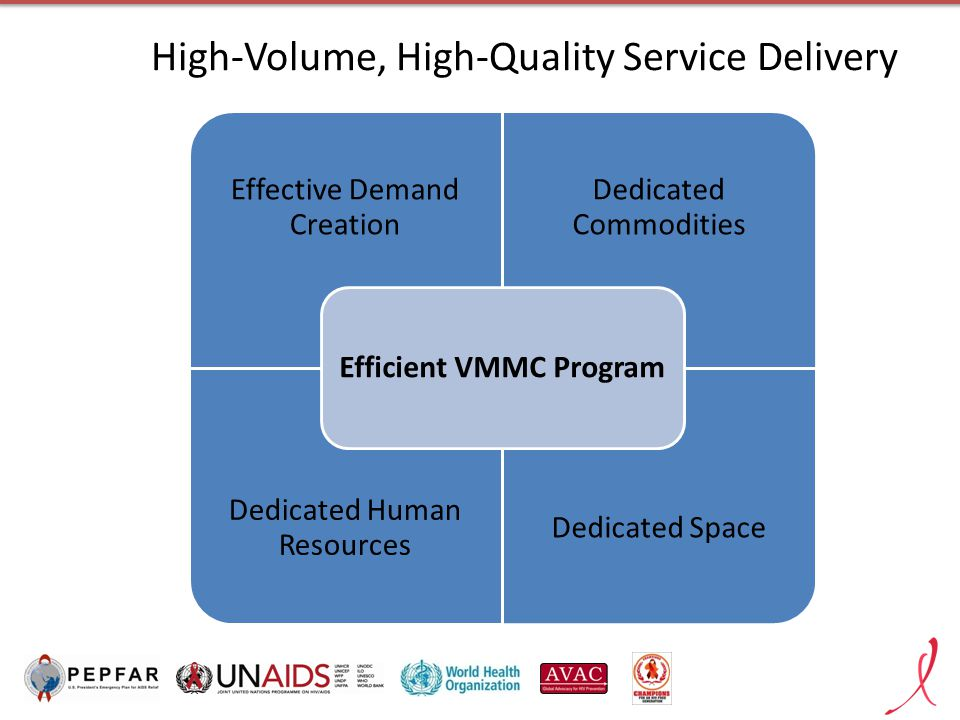 High-Volume, High-Quality Service Delivery Effective Demand Creation Dedicated Commodities Dedicated Human Resources Dedicated Space Efficient VMMC Program