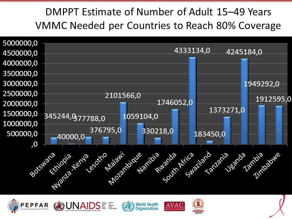 DMPPT Estimate of Number of Adult 15–49 Years VMMC Needed per Countries to Reach 80% Coverage