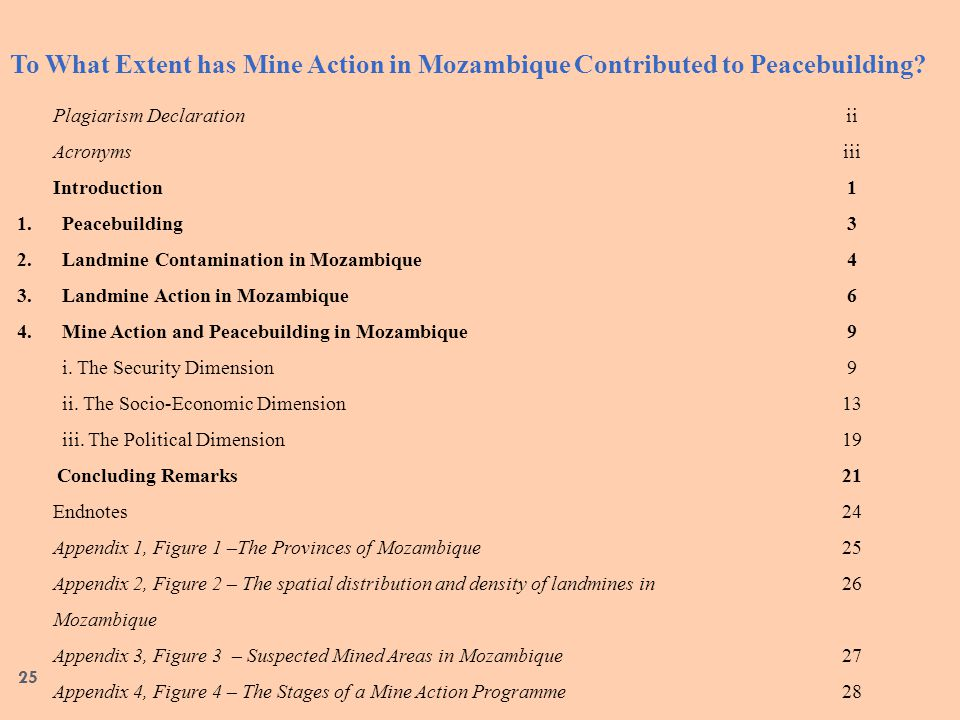 To What Extent has Mine Action in Mozambique Contributed to Peacebuilding.