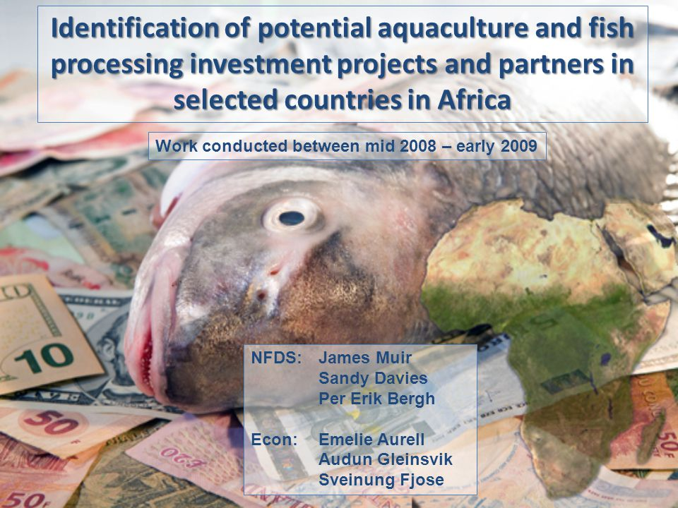 Identification of potential aquaculture and fish processing investment projects and partners in selected countries in Africa NFDS: James Muir Sandy Davies Per Erik Bergh Econ:Emelie Aurell Audun Gleinsvik Sveinung Fjose Work conducted between mid 2008 – early 2009