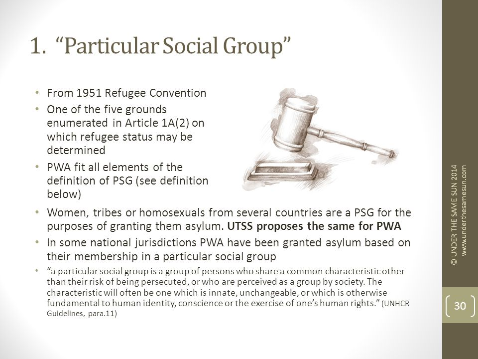 """1. """"Particular Social Group"""" From 1951 Refugee Convention One of the five grounds enumerated in Article 1A(2) on which refugee status may be determine"""