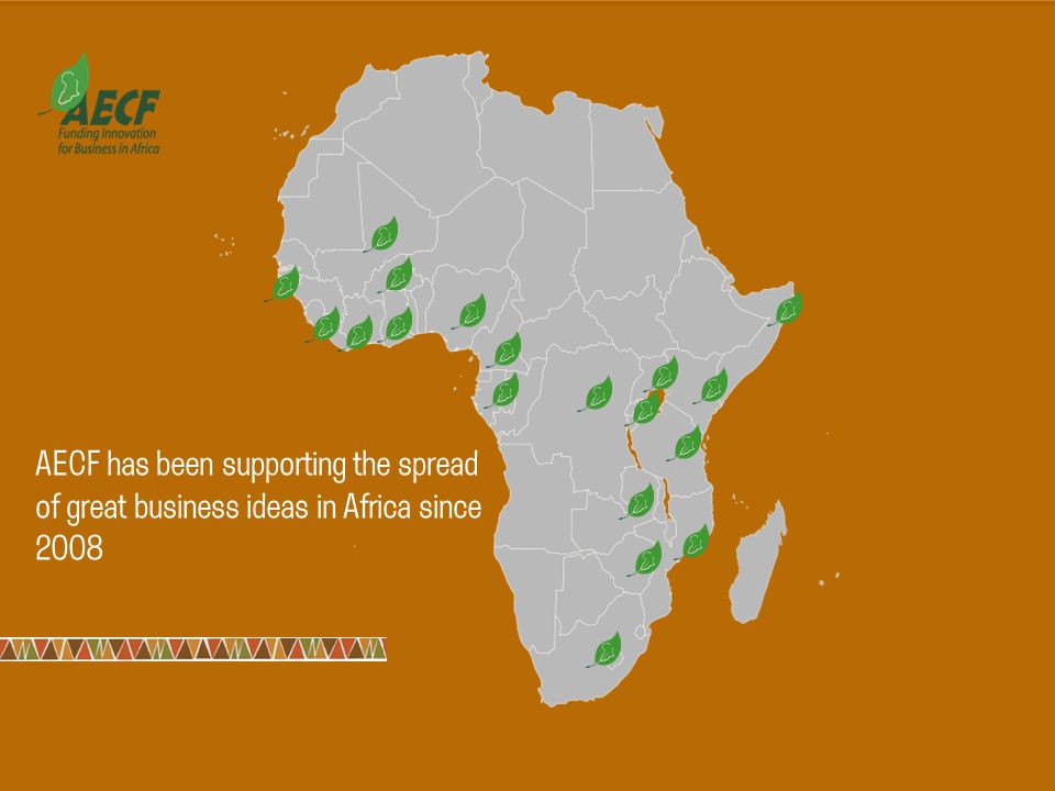 AECF has been supporting the spread of great business ideas in Africa since 2008