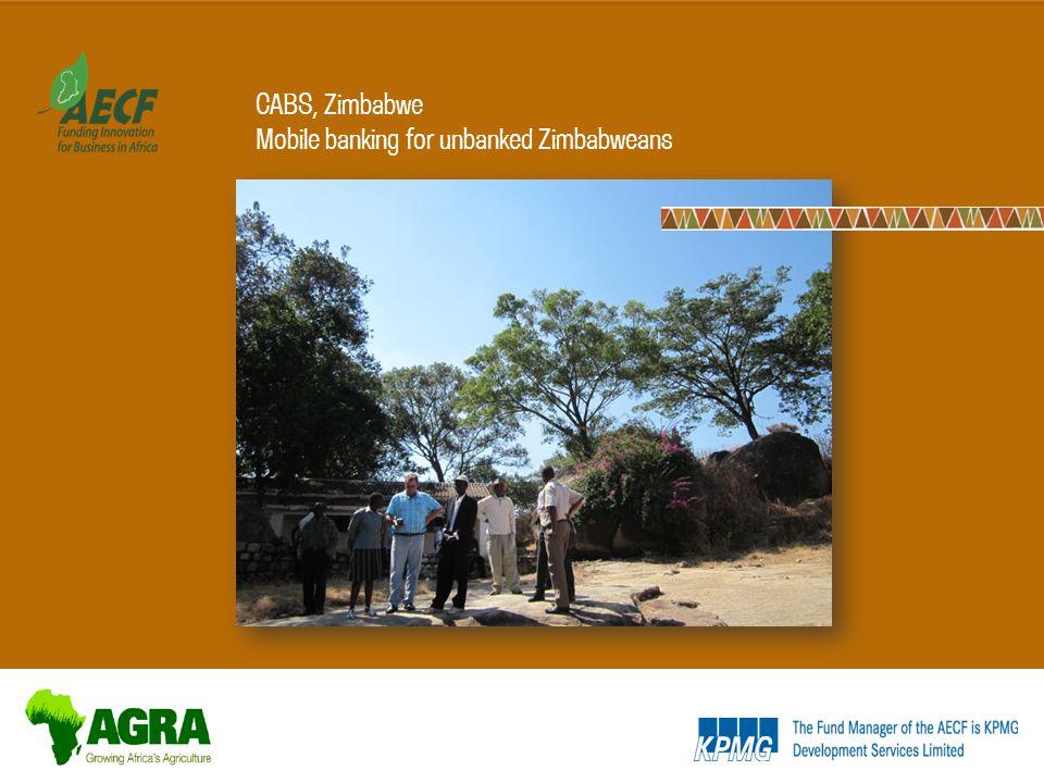 CABS, Zimbabwe Mobile banking for unbanked Zimbabweans