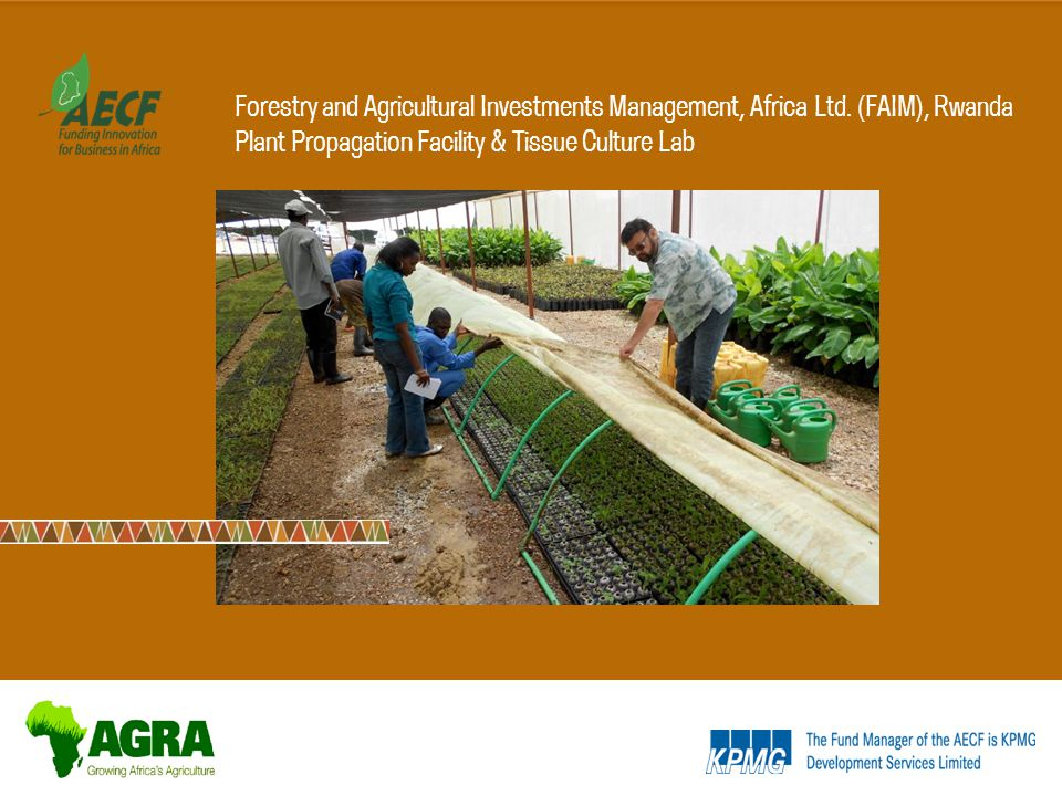Forestry and Agricultural Investments Management, Africa Ltd.