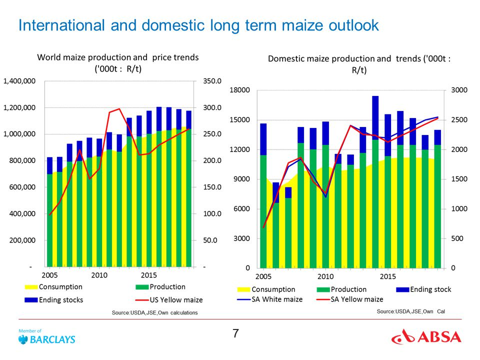 88 Domestic short term maize outlook