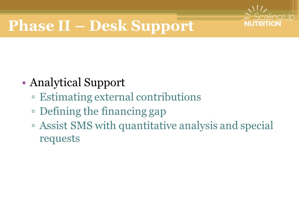 Phase II – Desk Support Analytical Support ▫Estimating external contributions ▫Defining the financing gap ▫Assist SMS with quantitative analysis and special requests