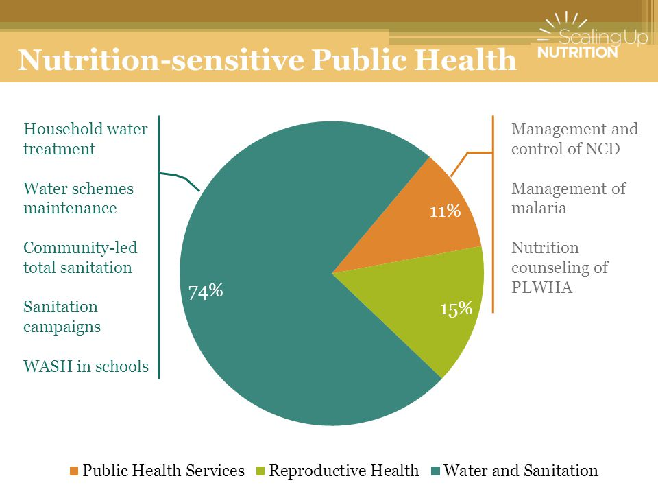 Nutrition-sensitive Public Health Household water treatment Water schemes maintenance Community-led total sanitation Sanitation campaigns WASH in schools Management and control of NCD Management of malaria Nutrition counseling of PLWHA